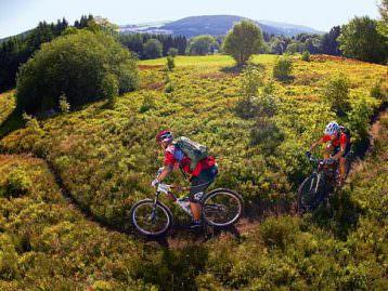 Biken & Sport